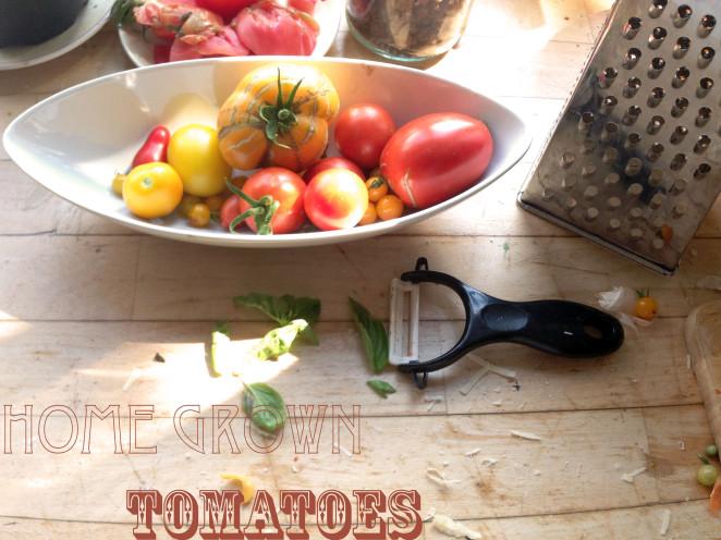 Tomaten – die absoluten Alleskönner