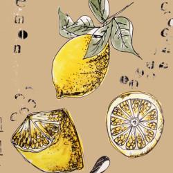 Bild für Was Zitronen so alles können….