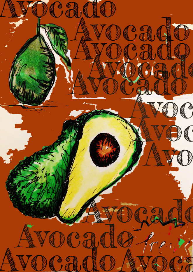 The Avocado – Our Favourite Green Berry