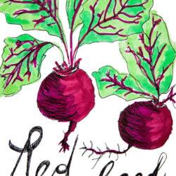 Bild für So rot, so gesund – Rote Rüben
