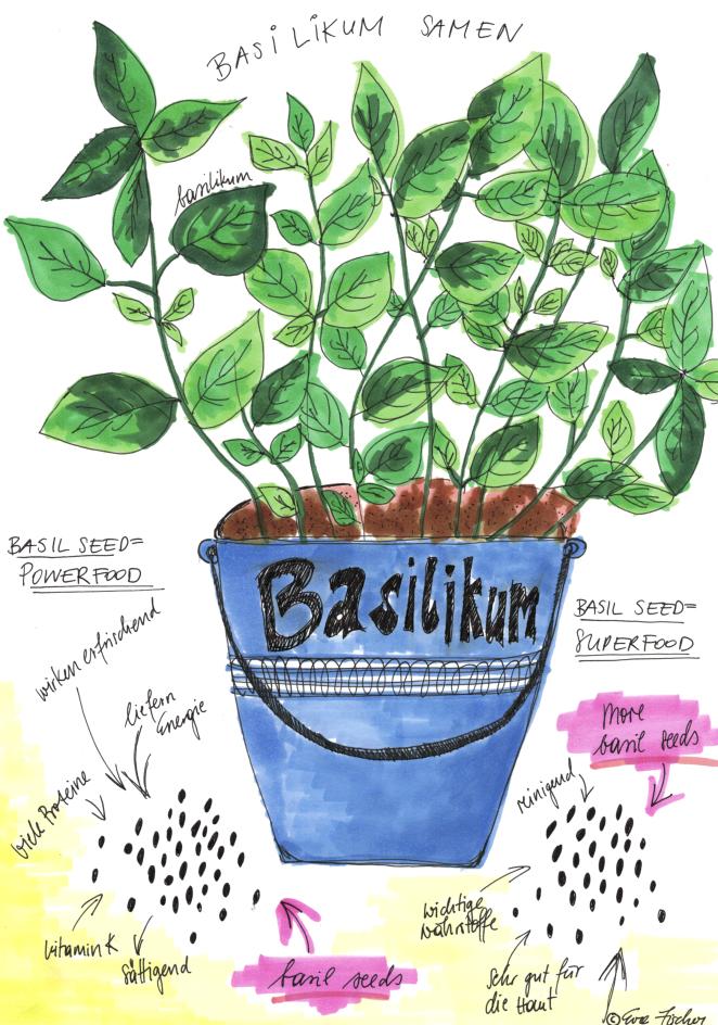 Basilikum Samen – der neue Basilikum Boom