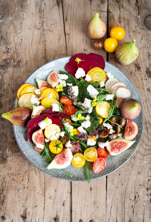 Picture for Colourful Root Vegetable and Fig Salad