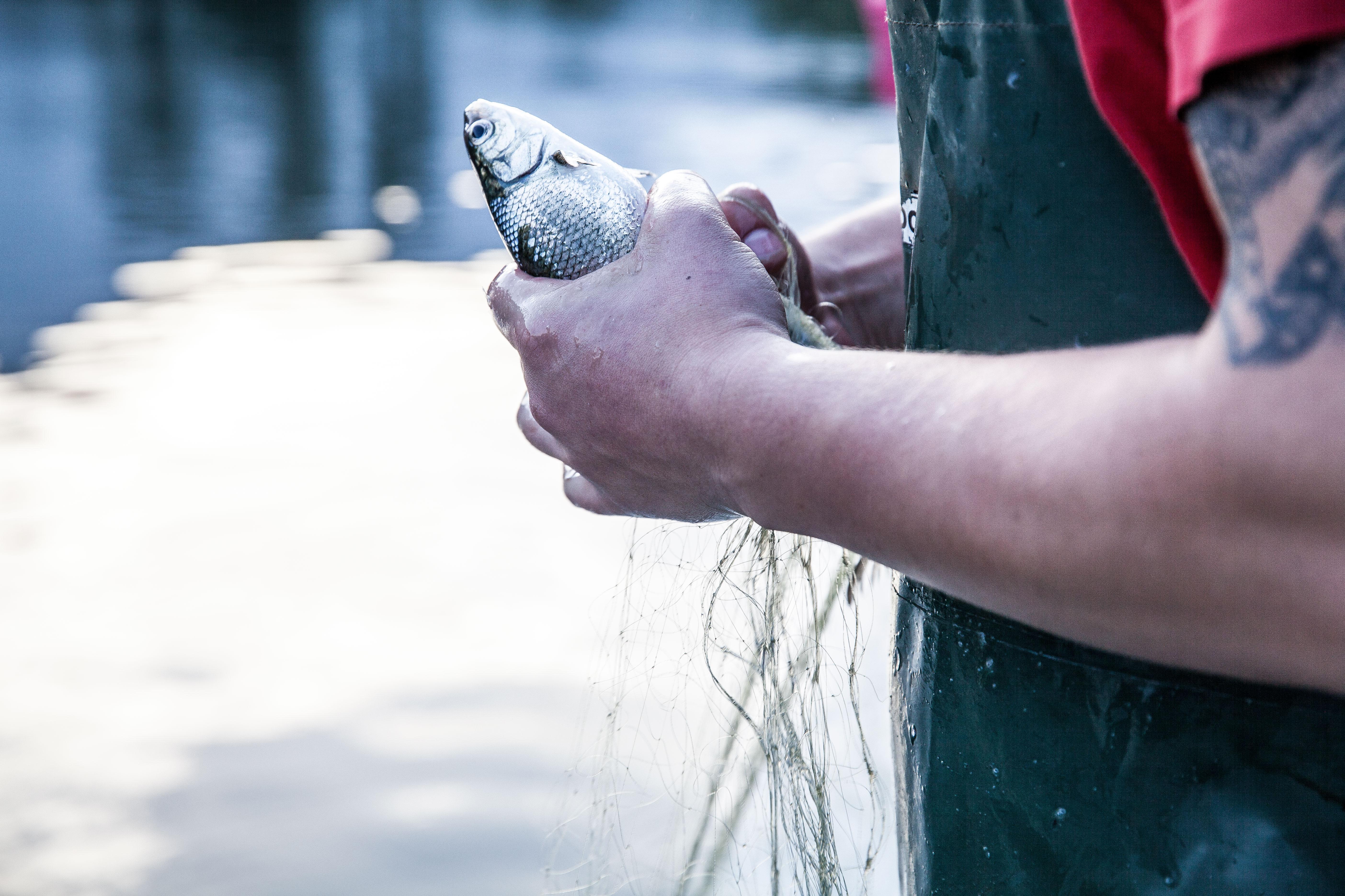 Fishing_2956
