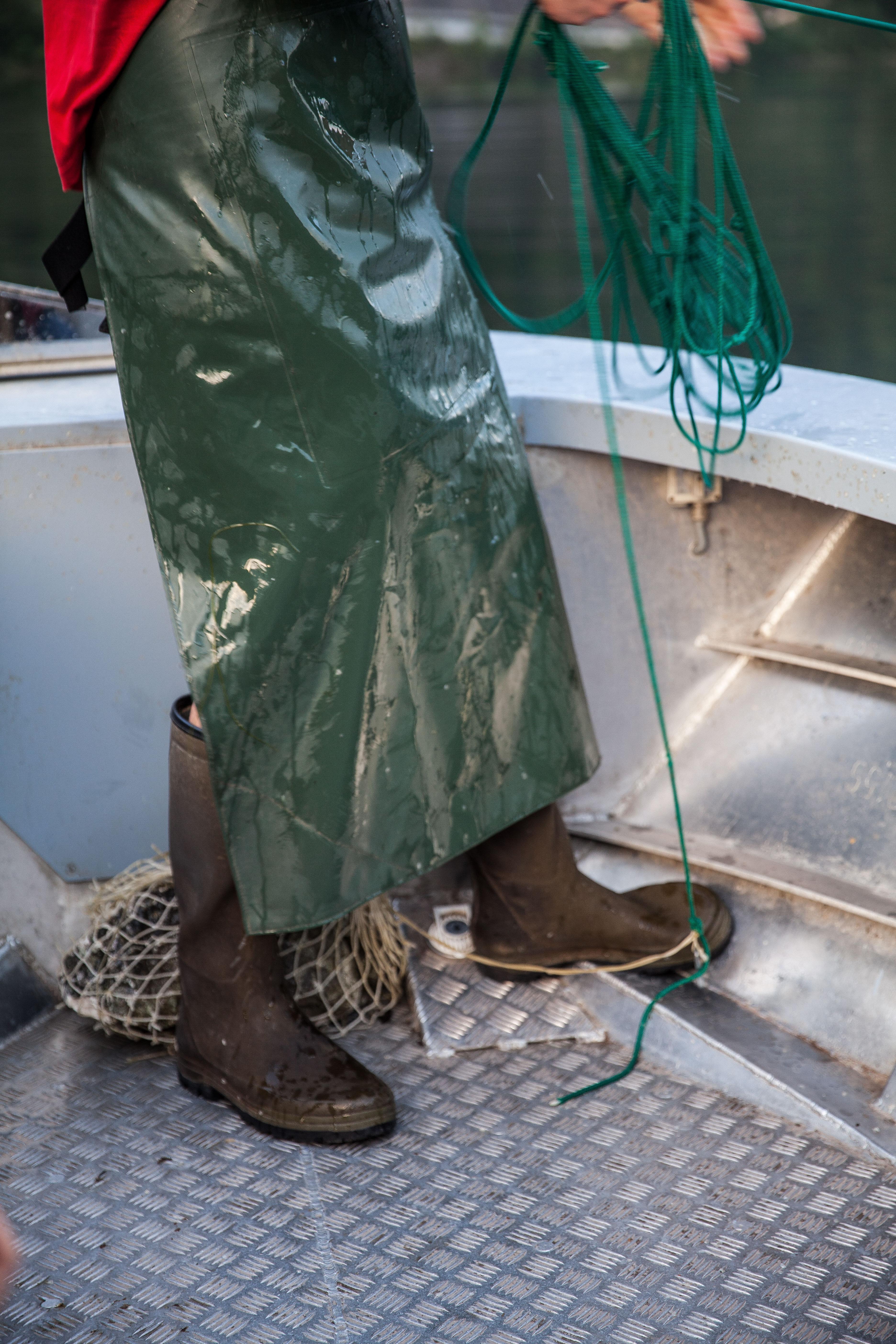 was bedeutet gefischt?